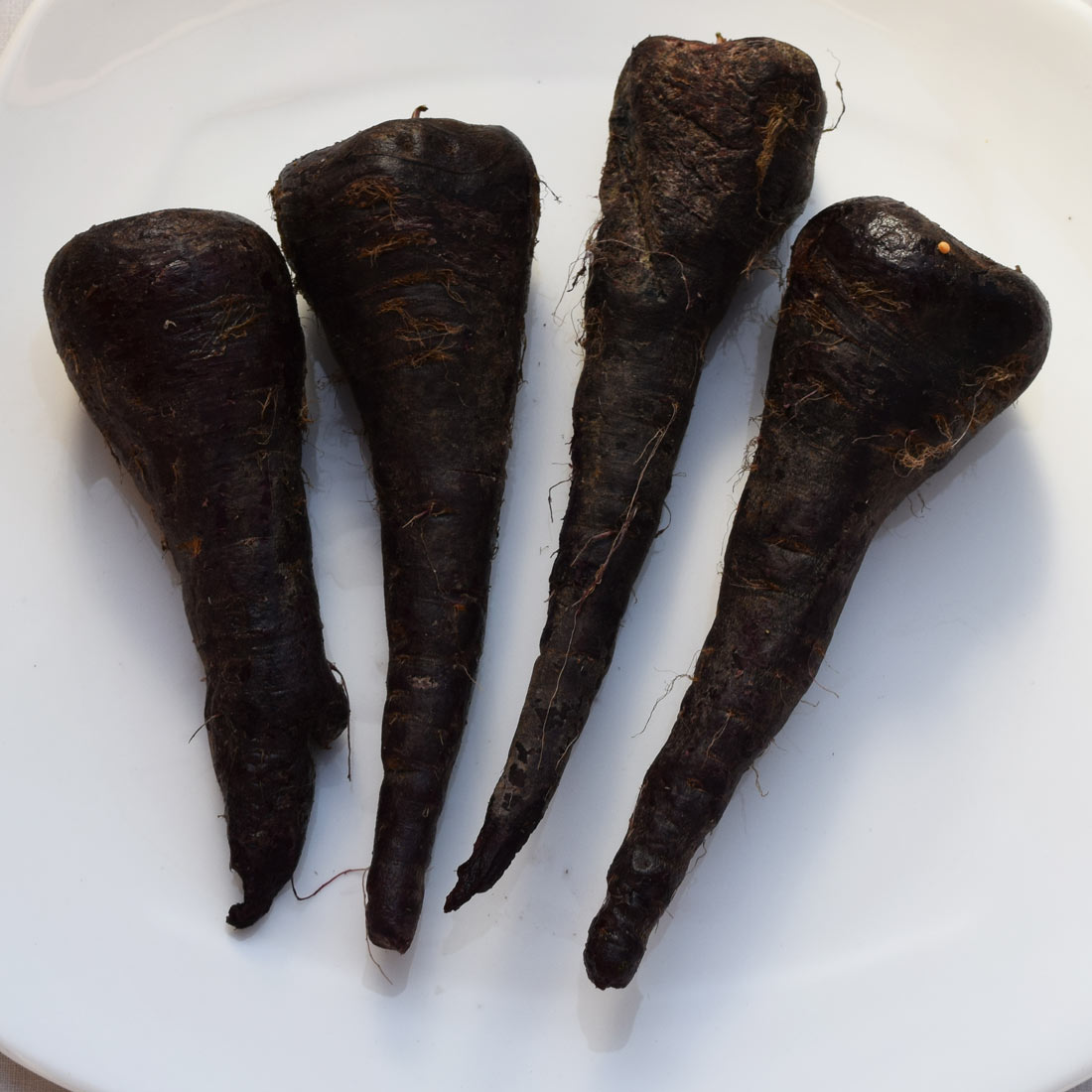Kali Gajar or Black Carrot